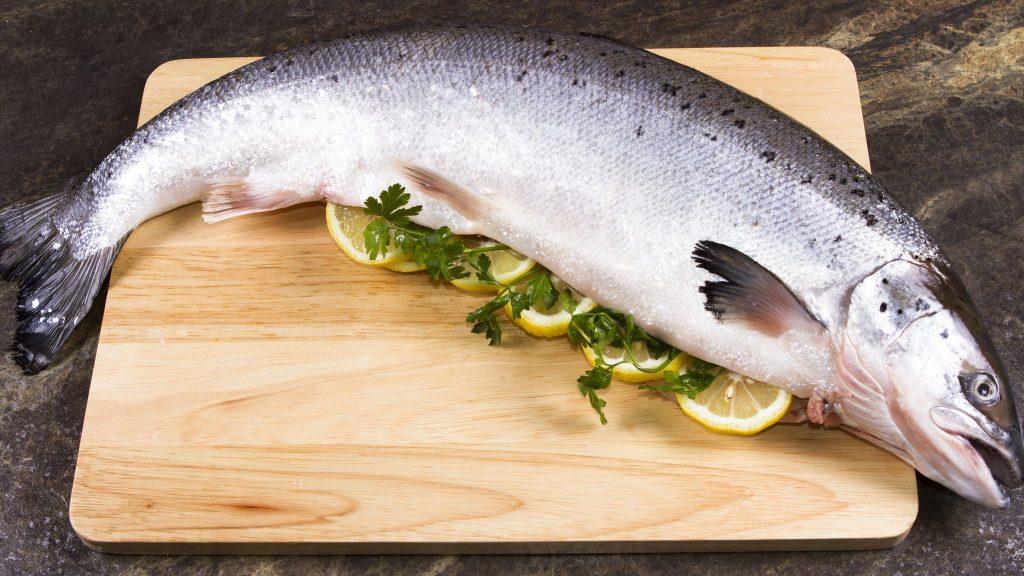 Laser และ Robo Feeders เทคโนโลยีในการเลี้ยงปลาแซลมอลในอนาคต