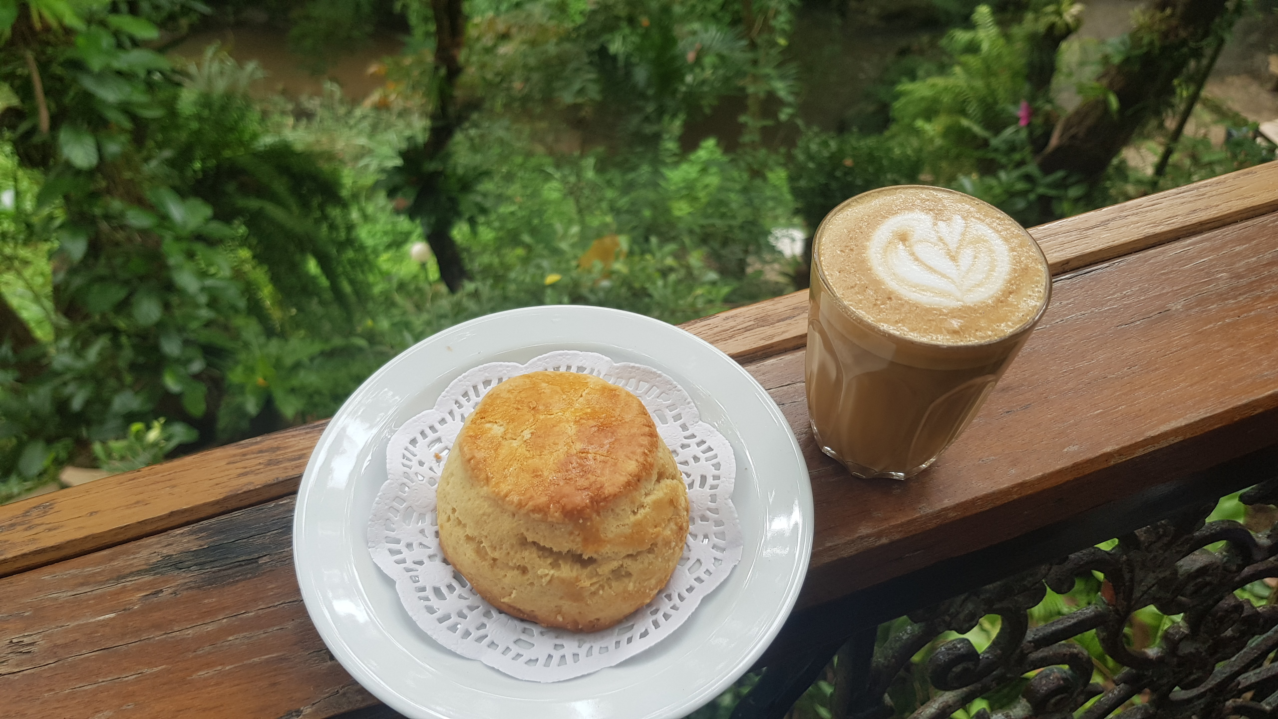 Scone & Piccolo Latte @ Wild Coffee & Bistro เชียงใหม่