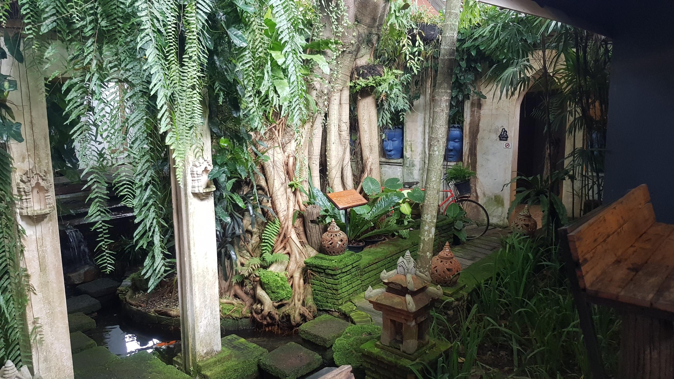 ทางเดินลงไปห้องน้ำ @ Cafe de Oasis ให้ความรู้สึกเหมือนกำลังเดินเข้าป่า