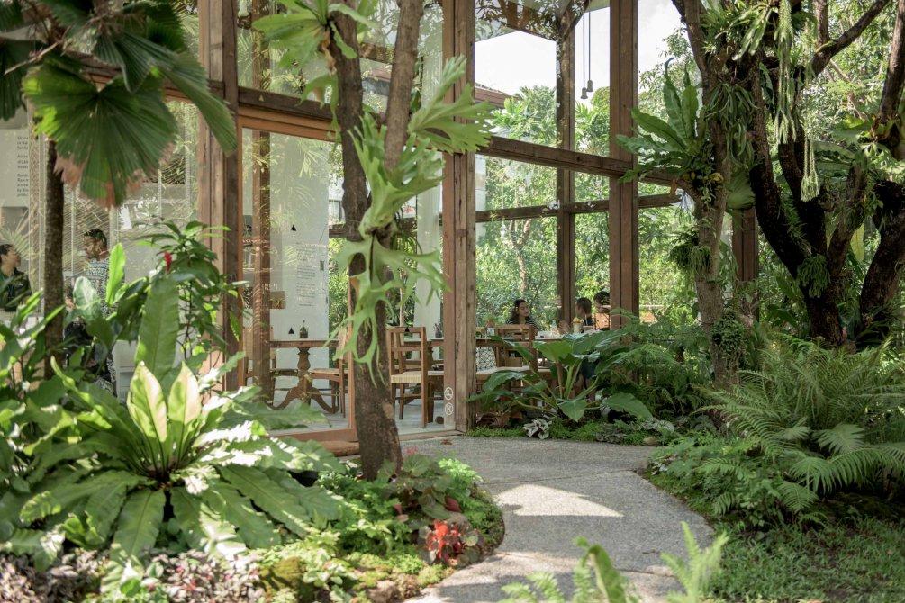 """""""Patom Organic Living"""" คาเฟ่ออร์กานิคใจกลางทองหล่อ - กลาสเฮ้าส์แสนอบอุ่นภายใต้ร่มเงาของต้นไม้ใหญ่ @ ทองหล่อ ซอย23"""